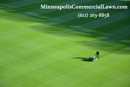5 REASONS TO HIRE A COMMERCIAL LAWN CARE SERVICE